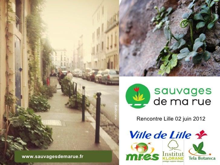 M.Gauvain                         J.Belhocine                                       Rencontre Lille 02 juin 2012www.sauvag...