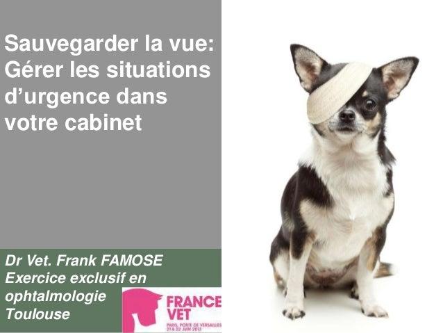 Sauvegarder la vue:Gérer les situationsd'urgence dansvotre cabinetDr Vet. Frank FAMOSEExercice exclusif enophtalmologieTou...