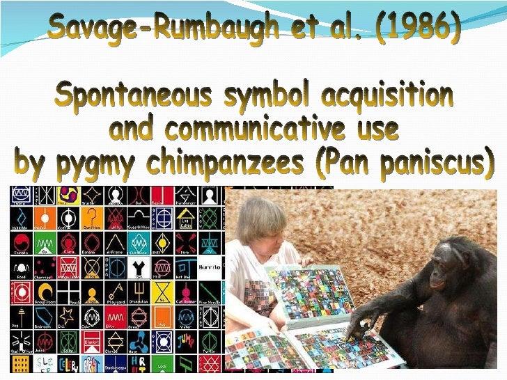Savage-Rumbaugh et al. (1986) Spontaneous symbol acquisition and communicative use by pygmy chimpanzees (Pan paniscus)