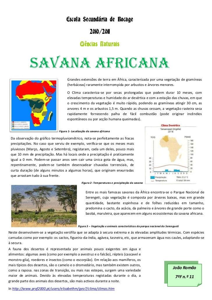 Escola Secundária de Bocage<br />2010/2011<br />Ciências Naturais<br />Grandes extensões de terra em África, caracterizada...
