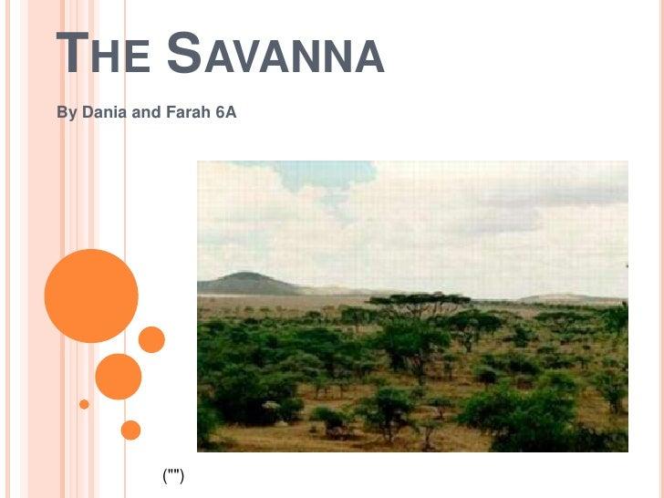 "The Savanna<br />By Dania and Farah 6A<br />("""")<br />"