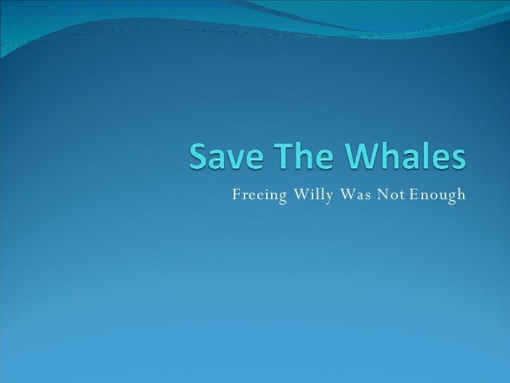 Freeing Willy Was Not Enough
