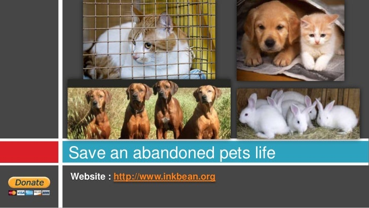 Save an abandoned pets lifeWebsite : http://www.inkbean.org