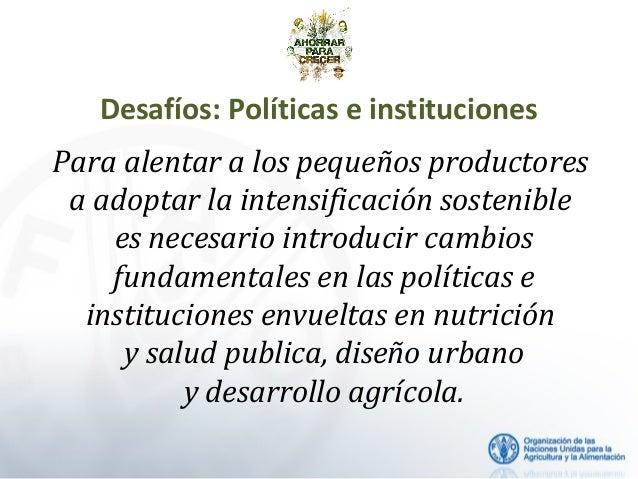 Desafíos: Políticas e instituciones Para alentar a los pequeños productores a adoptar la intensificación sostenible es nec...