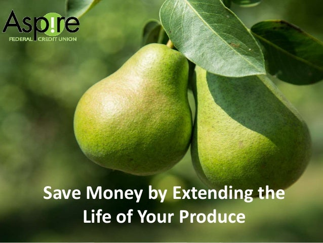Save Money by Extending the Life of Your Produce