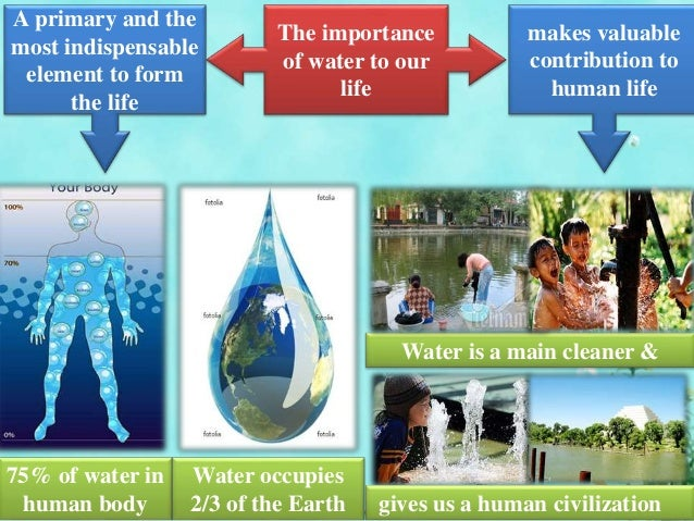 the importance of water in our life