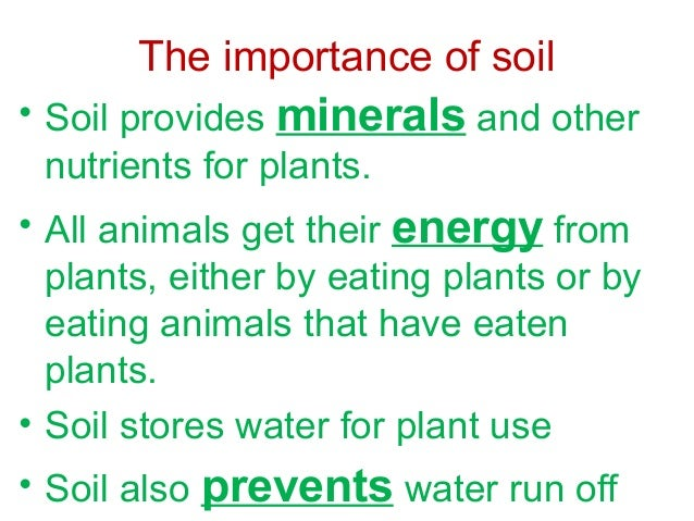 Save soil for Importance of soil minerals