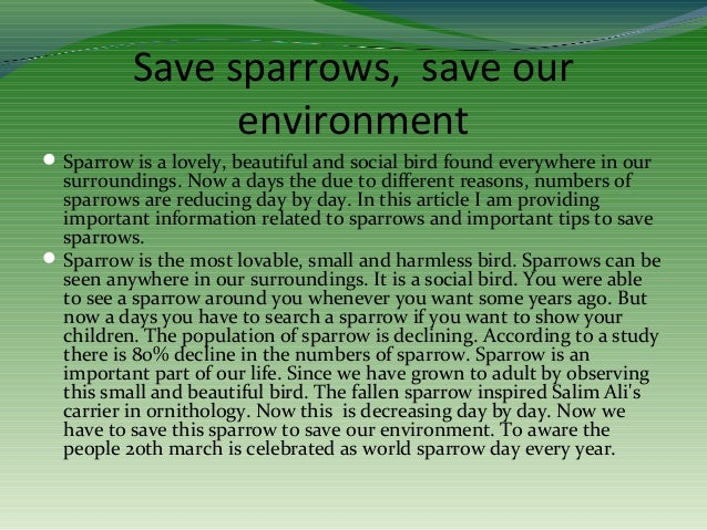 Essay on saving environment