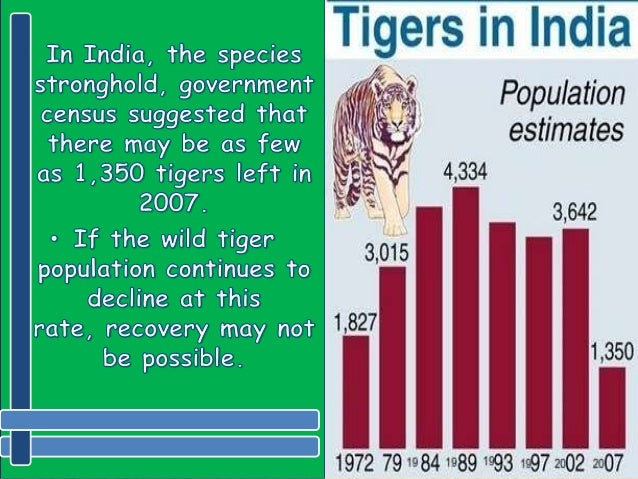 speech on save tigers