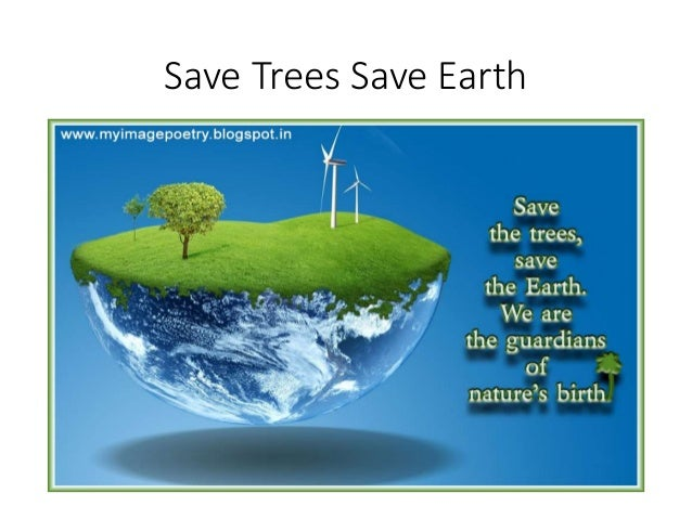 save trees wallpaper 1 - photo #20