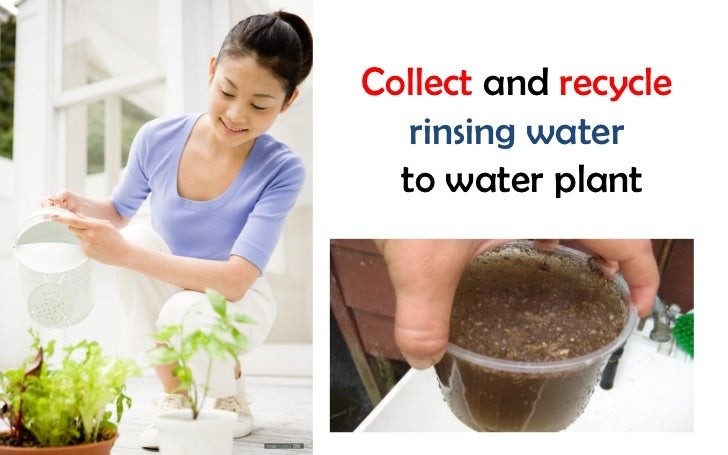 Collect and recycle   rinsing water  to water plant