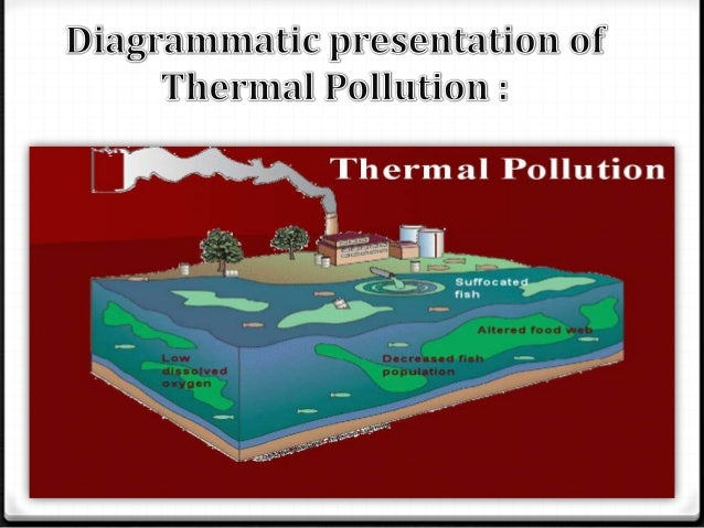 the importance of the issue of thermal pollution What is thermal pollution the primary source of thermal pollution is the discharge of heatedand even during warm weather, urban runoff can have significant thermal impacts on.