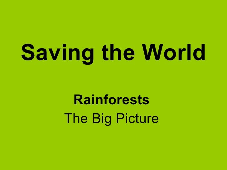 Saving the World Rainforests The Big Picture