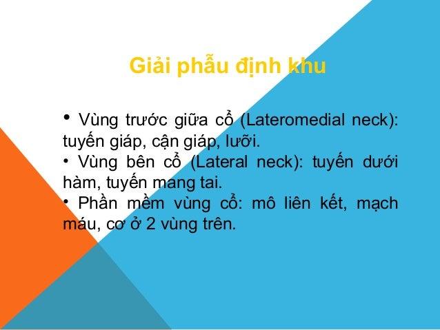Giải phẫu định khu • Vùng trước giữa cổ (Lateromedial neck): tuyến giáp, cận giáp, lưỡi. • Vùng bên cổ (Lateral neck): tuy...