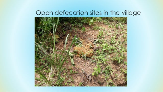 Open defecation sites in the village