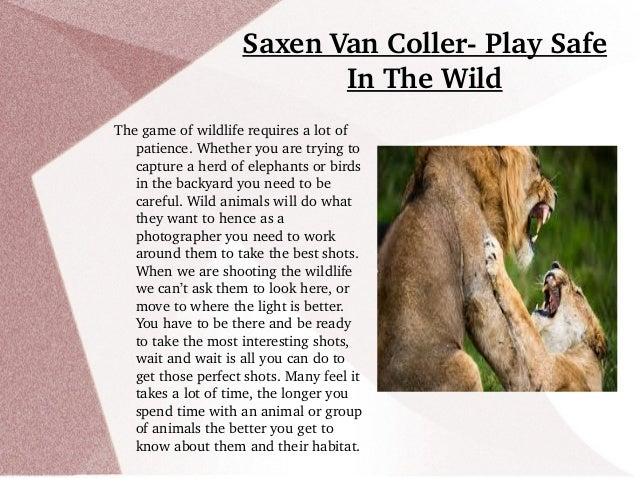 Saxen Van Coller­ Play Safe  In The Wild The game of wildlife requires a lot of  patience. Whether you are trying to  capt...