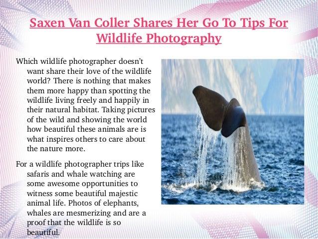 SaxenVanCollerSharesHerGoToTipsFor WildlifePhotography Whichwildlifephotographerdoesn't wantsharetheirlov...