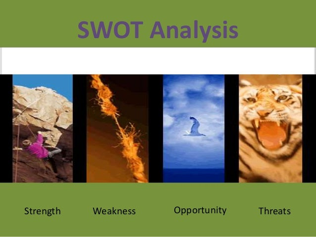 saxonville sausage swot analysis Transcript of marketing implementation project - saxonville italian sausage o t marketing plan - group b vivio saxonville sausage situation analysis market, company, competitors, customers swot analysis marketing strategy implementation 1 2 3 tactics 4ps.