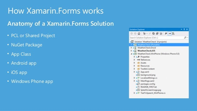 Platform Renderers Taking Xamarin.Forms UI to the people (devices) ? ? ?