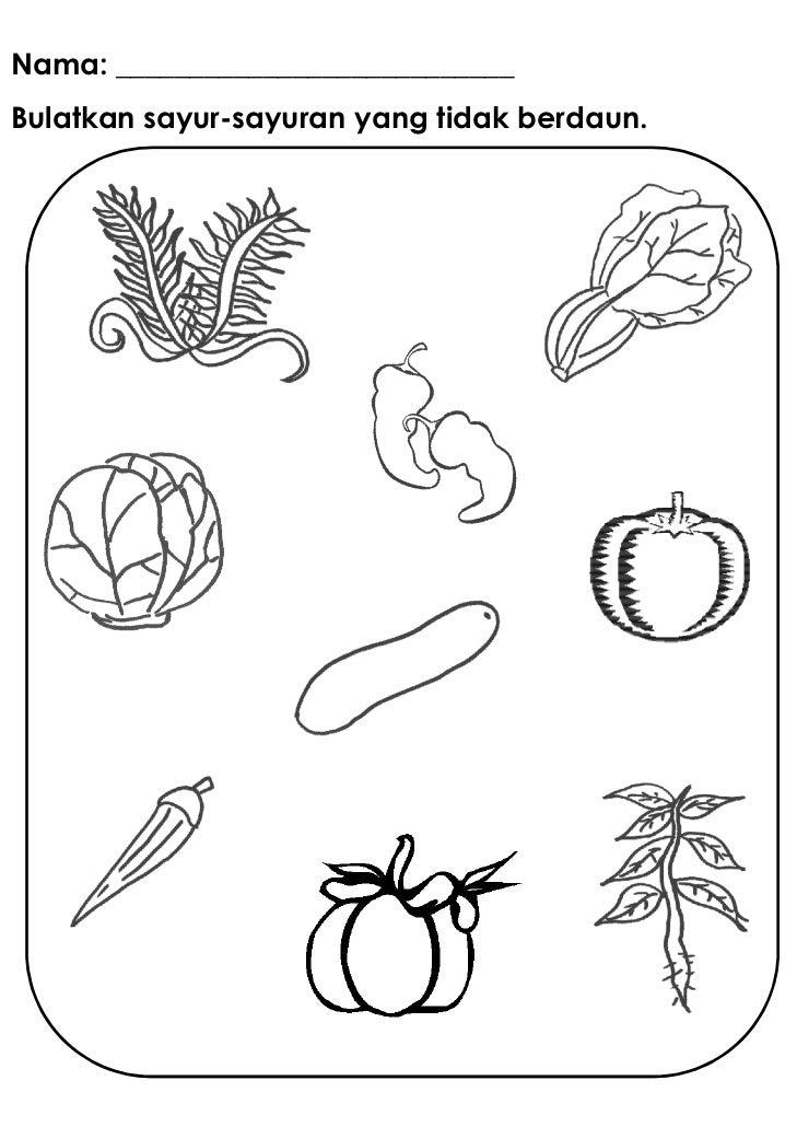 Nama: ___________________________Bulatkan sayur-sayuran yang tidak berdaun.