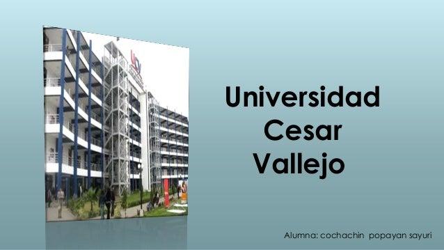 Universidad   Cesar  Vallejo    Alumna: cochachin popayan sayuri