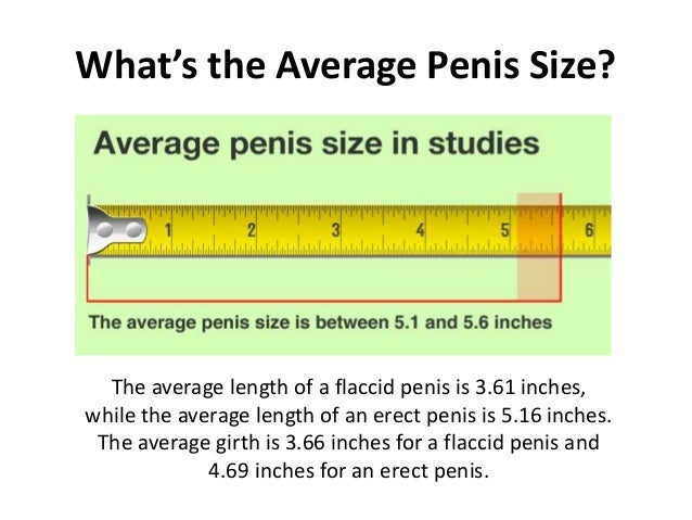 Penis in inches