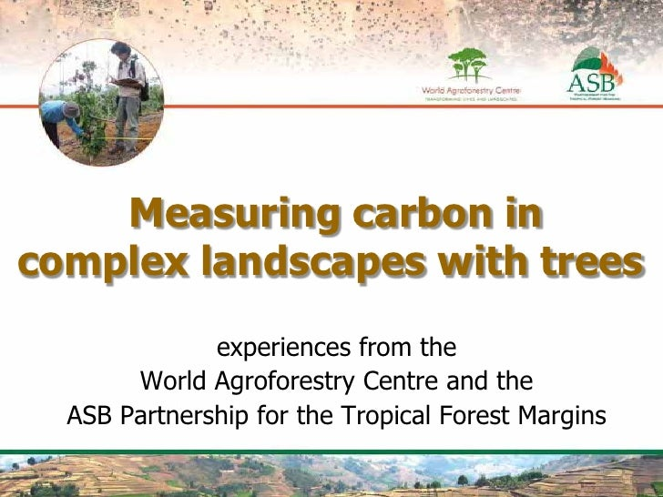 Measuring carbon in complex landscapes with trees                  experiences from the        World Agroforestry Centre a...