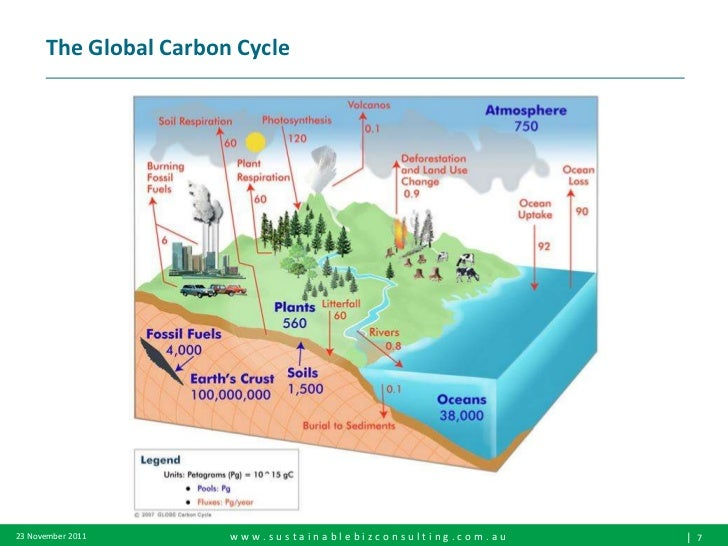 carbon pricing mechanism overview Carbon pricing — the method favored by many economists for reducing global-warming emissions — charges those who emit carbon dioxide (co 2) for their emissionsthat charge, called a carbon price, is the amount that must be paid for the right to emit one tonne of co 2 into the atmosphere.