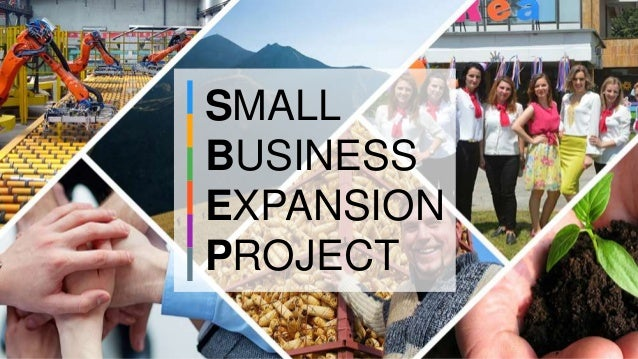 SMALL BUSINESS EXPANSION PROJECT