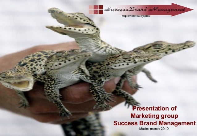Presentation of Marketing group Success Brand Management Made: march 2010.