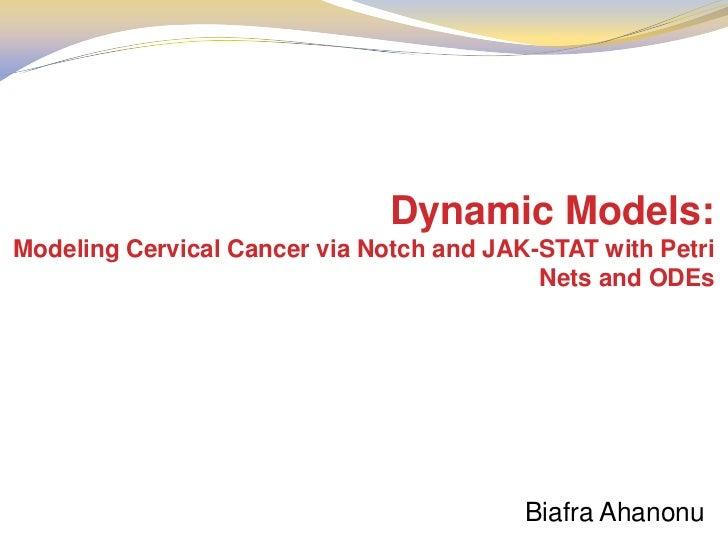 Dynamic Models:Modeling Cervical Cancer via Notch and JAK-STAT with Petri                                           Nets a...