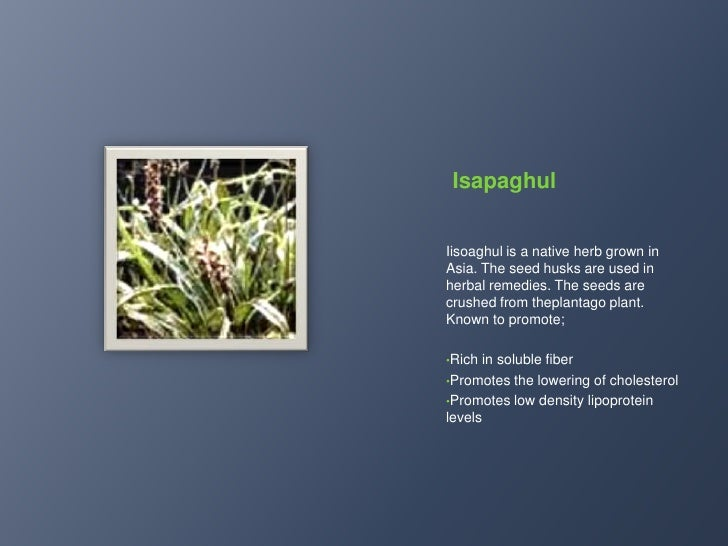 Natural skin toner and makes skin look young</li></li></ul><li>Salacia Reticulta<br />Salacia Reticulta is a herbal shrub ...
