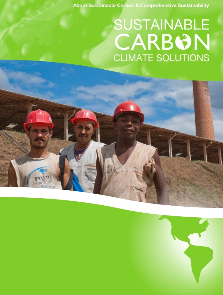 About Sustainable Carbon & Comprehensive Sustainability