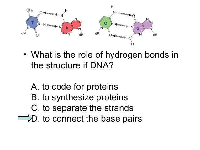ashg dna essay questions