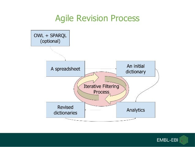 Agile Revision Process