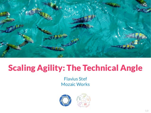 Scaling Agility: The Technical Angle Flavius Stef Mozaic Works 1.0