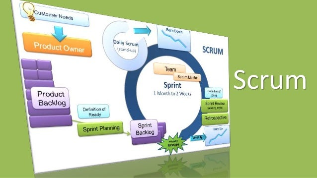 Traditional Scrum Scaling Concepts The Team
