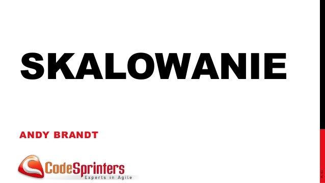 SKALOWANIE  ANDY BRANDT  PL 4.1