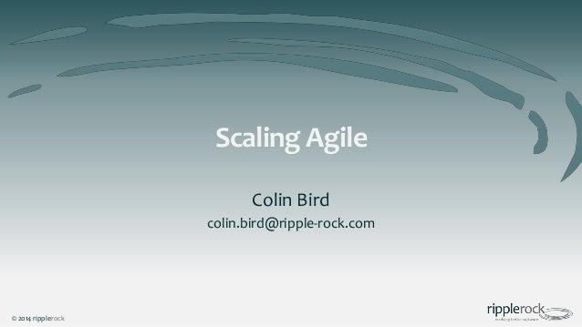 Scaling Agile Colin Bird colin.bird@ripple-rock.com  © 2014 ripplerock
