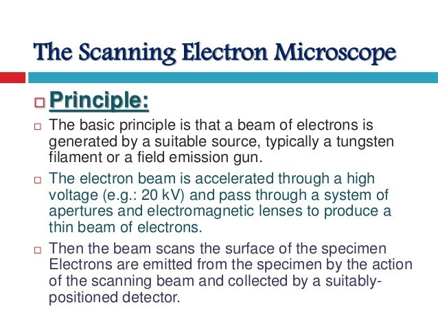 Light Microscope Vs Electron Microscope Difference