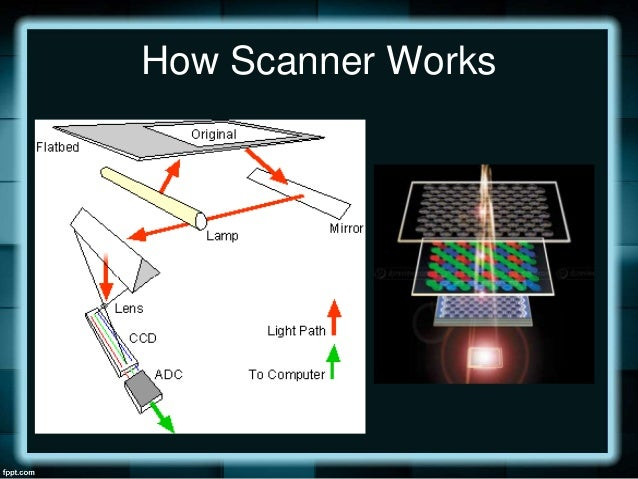 scanning text and images using scanner. Black Bedroom Furniture Sets. Home Design Ideas