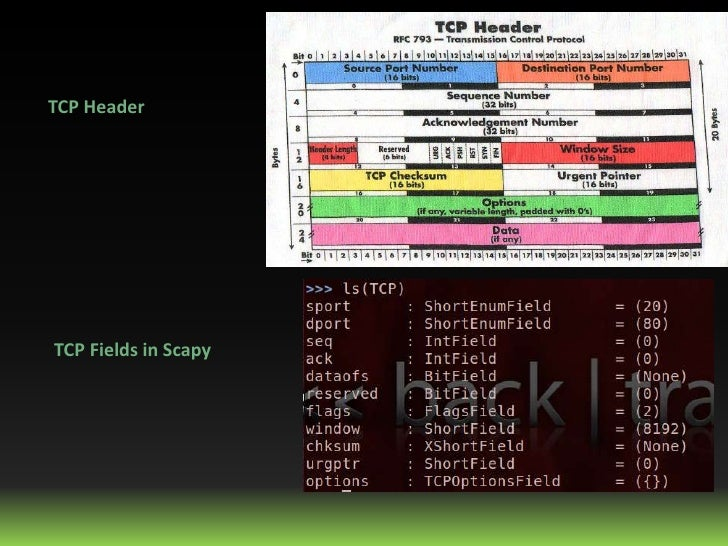 TCP HeaderTCP Fields in Scapy