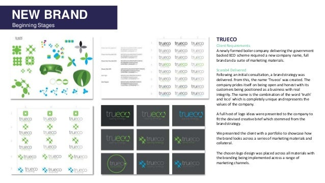 NEW BRAND Beginning Stages TRUECO Client Requirements A newly formed boiler company delivering the government backed ECO s...