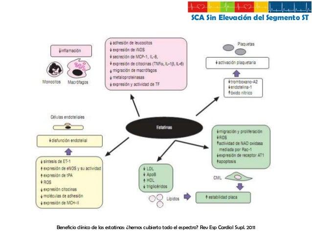 Síndrome Coronario Agudo Sin Elevación del Segmento ST