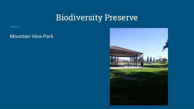 Biodiversity Preserve Mountain View Park