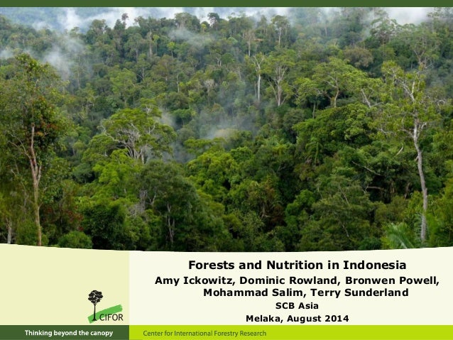 Forests and Nutrition in Indonesia Amy Ickowitz, Dominic Rowland, Bronwen Powell, Mohammad Salim, Terry Sunderland SCB Asi...