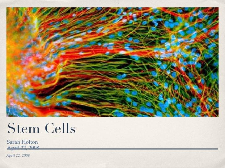Stem Cells <ul><li>Sarah Holton </li></ul><ul><li>April 22, 2008 </li></ul>April 22, 2009