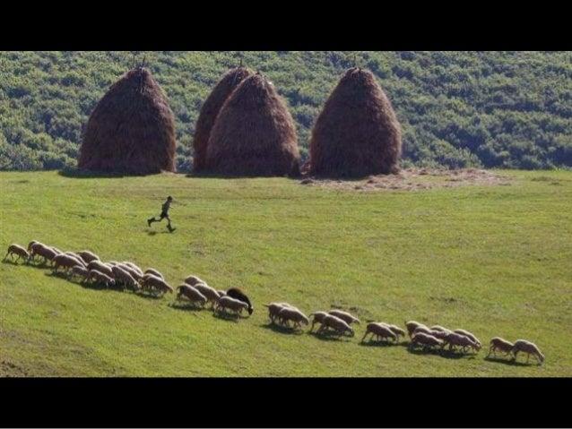 Scenes from Kosovo