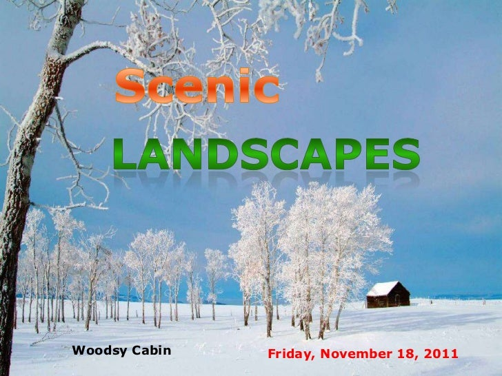 Woodsy Cabin   Friday, November 18, 2011