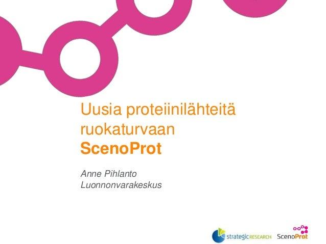 Anne Pihlanto Luonnonvarakeskus Uusia proteiinilähteitä ruokaturvaan ScenoProt